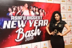 Asia's Biggest New Year Bash 2019  (11)