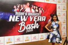 Asia's Biggest New Year Bash 2019  (13)