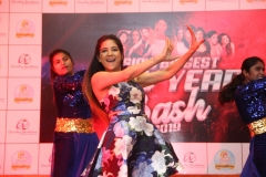 Asia's Biggest New Year Bash 2019  (9)