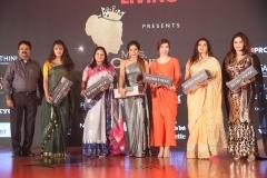 Mrs.Chennai 2018 – Grand Finale (20)