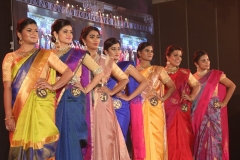 Mrs.Chennai 2018 – Grand Finale (30)